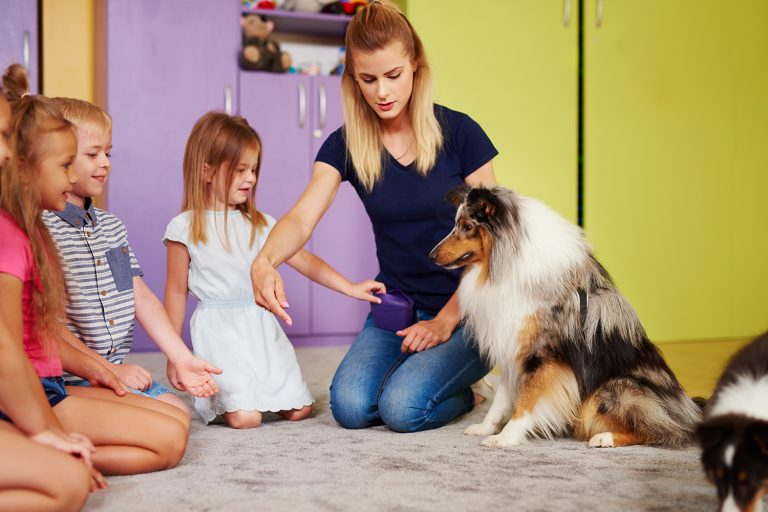 Therapy dog in school classroom with Teacher and students