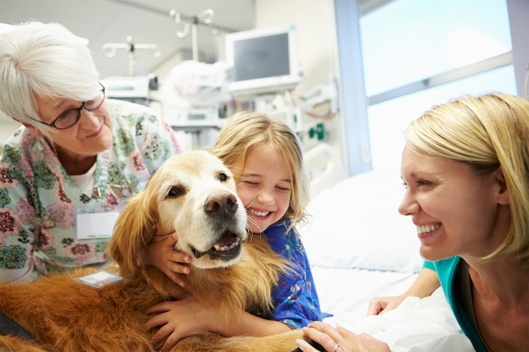 Dog Therapy with Trainer, patient and mother